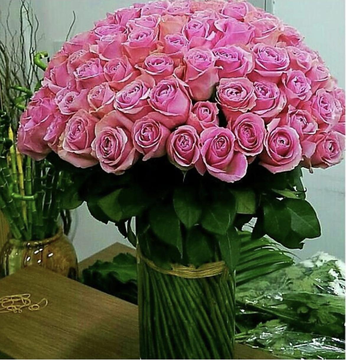 100 pcs std roses