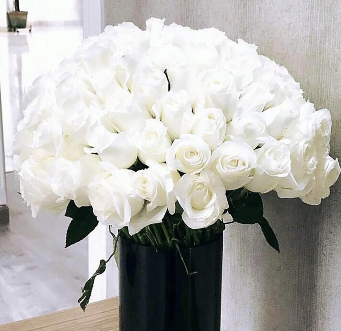 100 pcs std roses with vases
